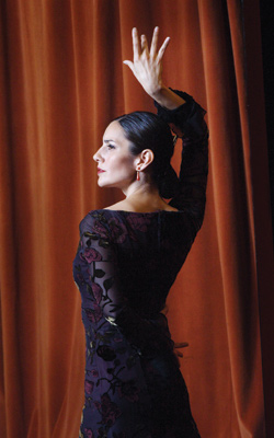 A Passion for Flamenco