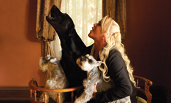 Lucky Dogs –Women & their dogs
