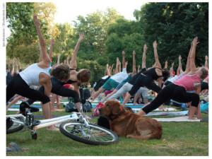 Health-yogaPark