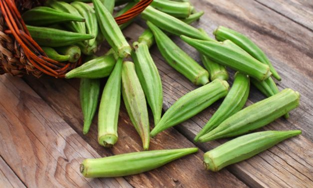 South Texas Summer Crops: Ornamental and Tasty
