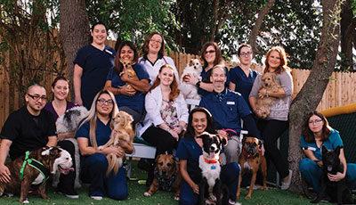 VitalPet Huebner Oaks Veterinary Hospital