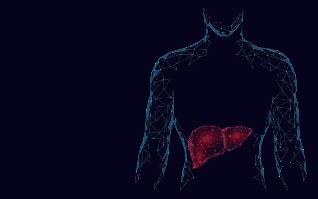 Health liver