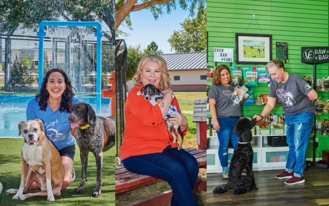 FEATURE: For the Love of Dogs