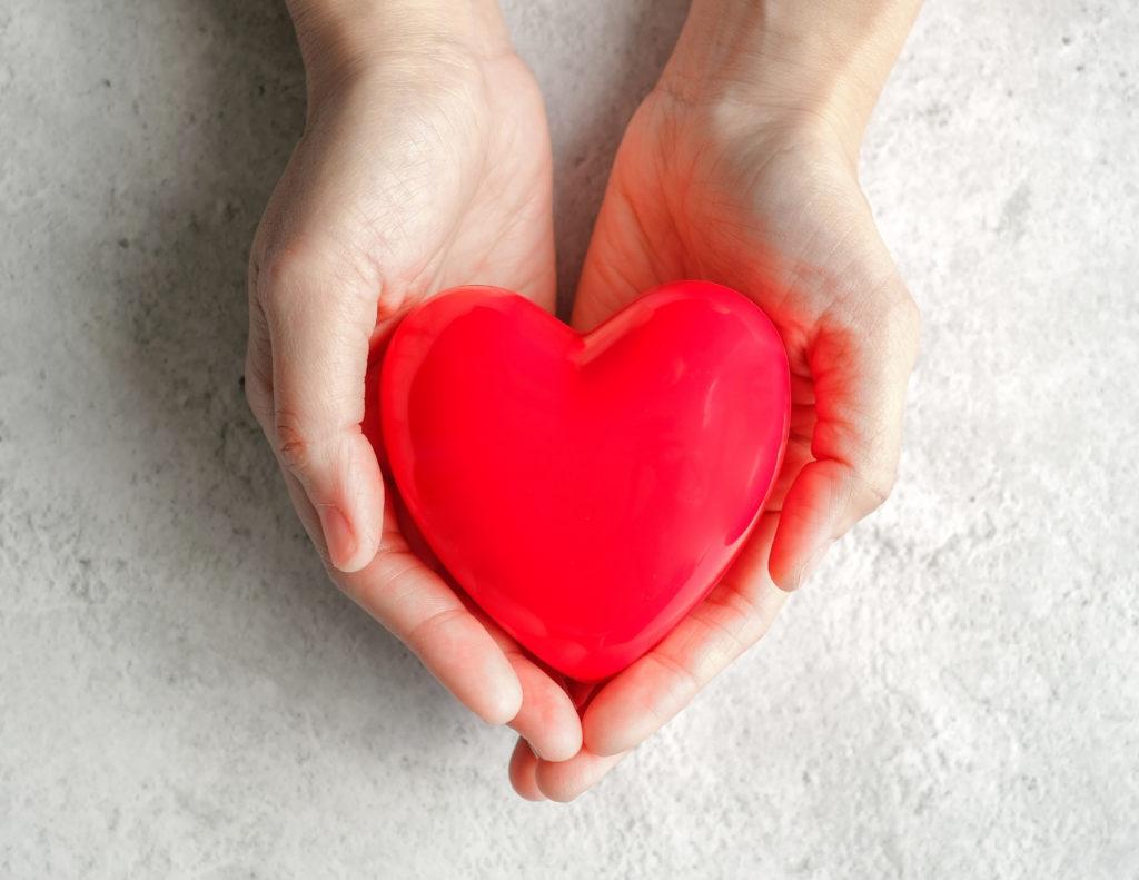 women's cardiovascular heart health